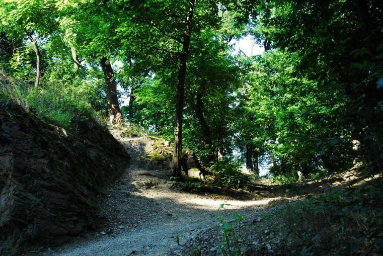 Kunratický les - Беговые трассы в Праге
