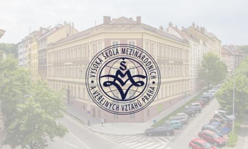 vsmvv институт