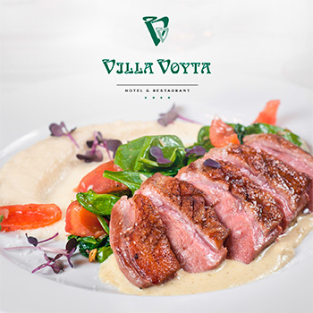 VillaVoyta