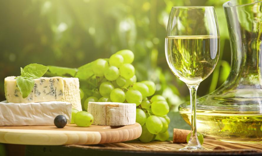 Винобрани на Пражском граде