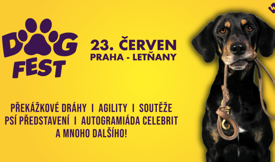 DogFest-e1523274067931-890x527.png