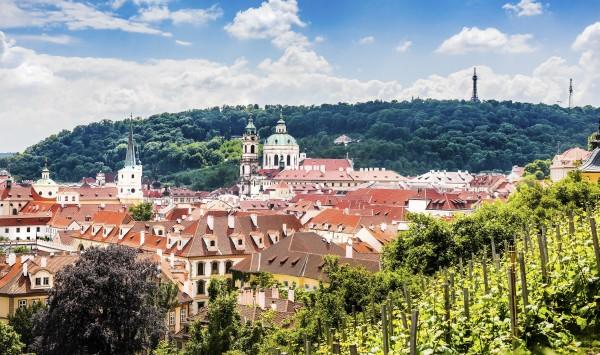 Прогулки по виноградникам Праги