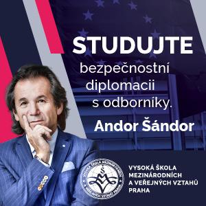 VSMVV2